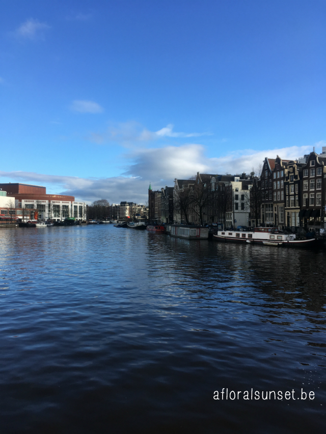 Cityguide Amsterdam - a floral sunset