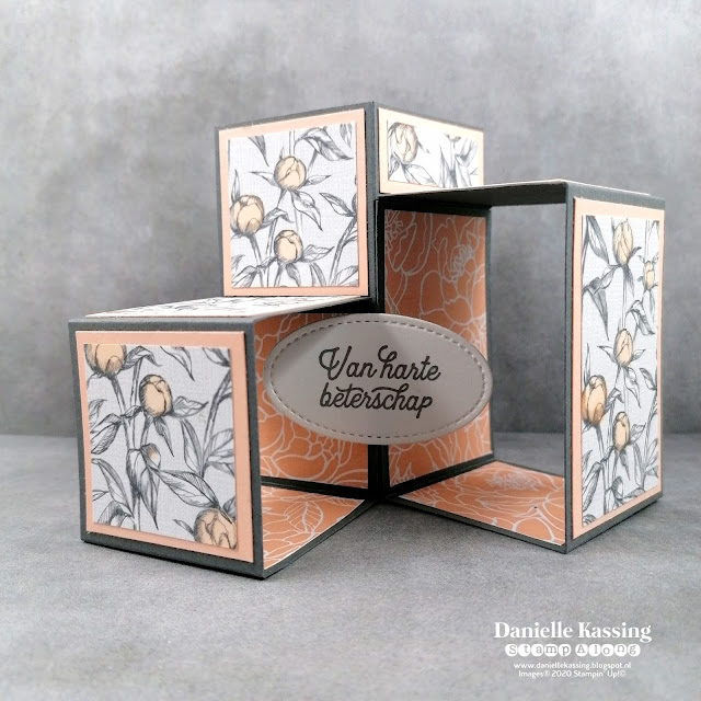 Stampin' Up! 3D Cube Pop Up Box Card Peony Garden DSP