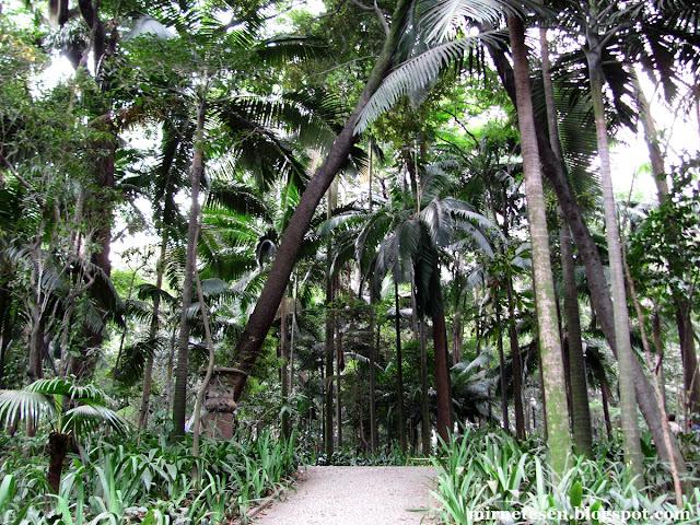 Парк Трианон - Сан-Паулу, Бразилия