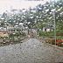 Chuva continua nesta terça-feira em Santa Leopoldina