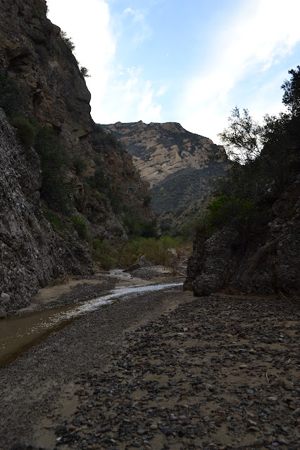 Castaic Creek in Cienaga Canyon