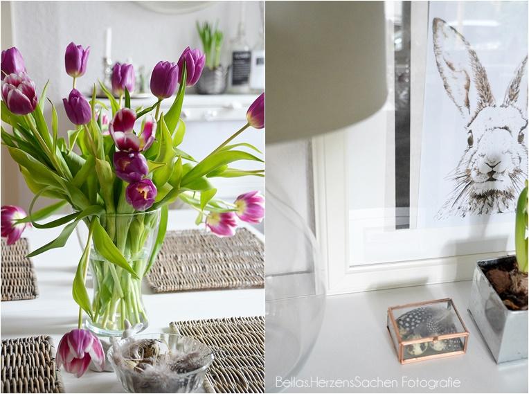 Tulpen Frühling Einrichtung