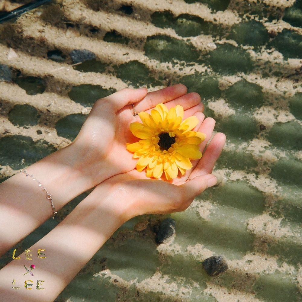 LEEXLEE – Sunset – Single