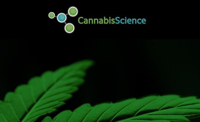 best marijuana penny stock to invest in
