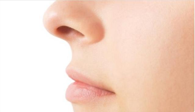 Fakta Hidung yang Menyenangkan untuk Pembelajaran Anak