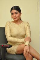 Actress Pooja Roshan Stills in Golden Short Dress at Box Movie Audio Launch  0041.JPG
