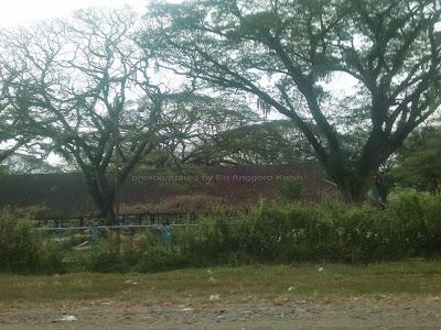 Sudut TPK di Saradan dulu pernah nginap di sini hampir seminggu, sangat indah untuk dikenang hehehe ....