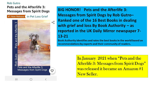 """Book Authority  Ranks """"Pets and the Afterlife 3"""" as 1 of top 16 books on grief/loss"""