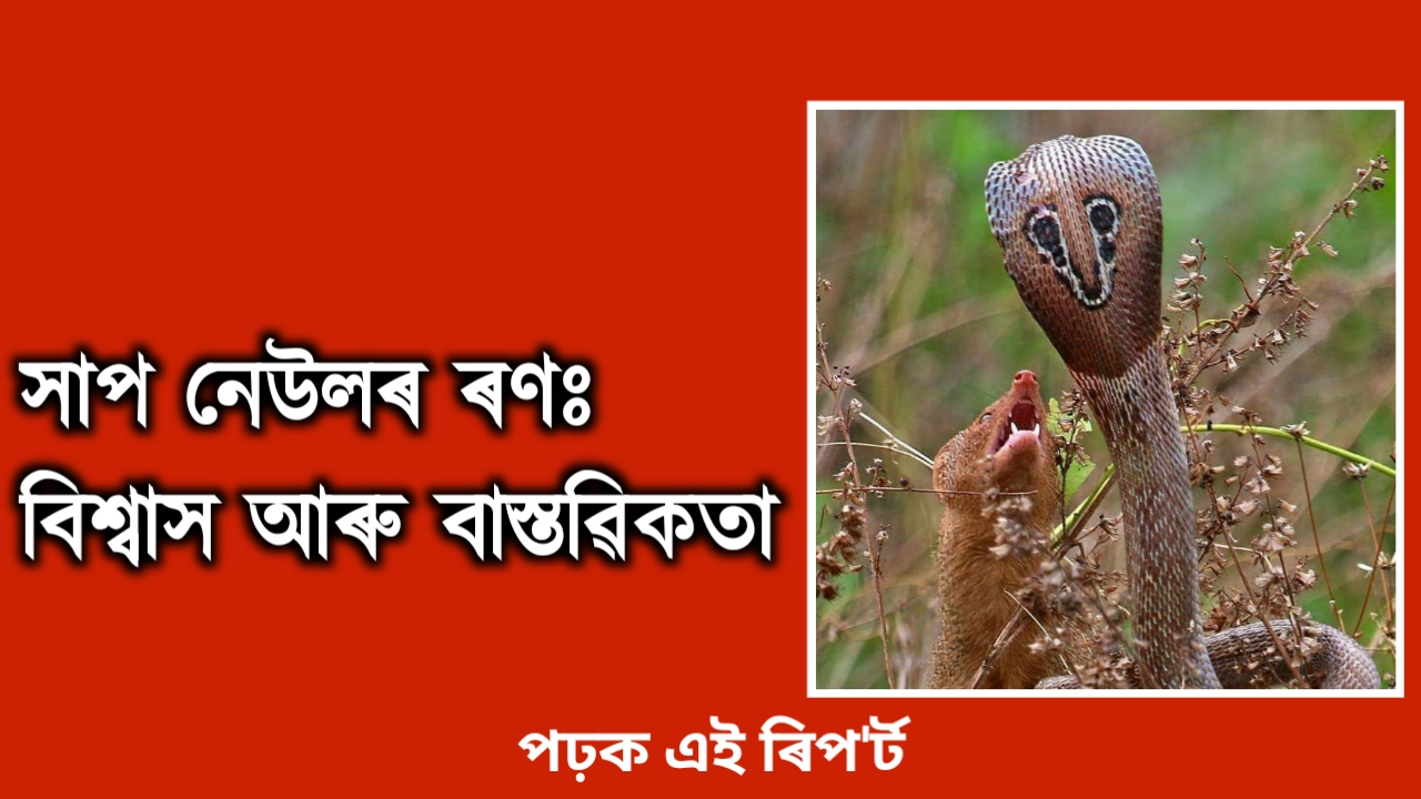 Facts and GK in Assamese Language