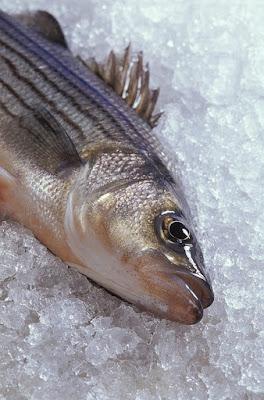 agar ikan tidak lengket saat digoreng di wajan