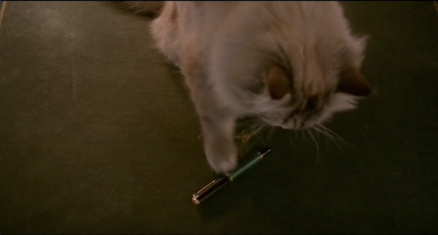 cat fountain pen kevin spacey nine lives