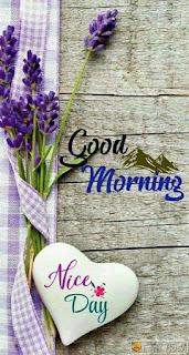 Good Morning  Wishes Beautiful Image