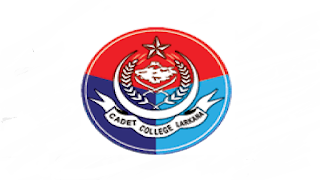 www.sbbgccl.edu.pk Jobs 2021 - SBBGCCL Shaheed Benazir Bhutto Girls Cadet College Larkana Jobs 2021 in Pakistan