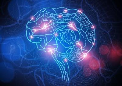 Neuro Batang Otak