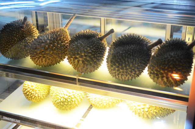 Chilled durians, ever tried one?