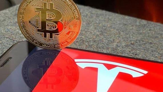 Elon Musk VS Bitcoin