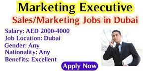 Outdoor Marketing Executive Job Vacancy in Automobile Company in Dubai