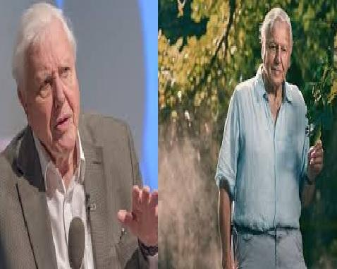 Sir David Attenborough, Instagram, video, IGTV
