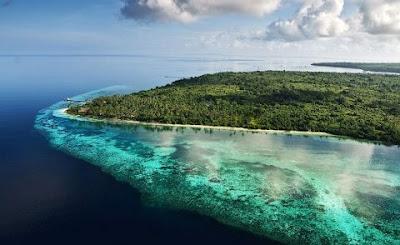Ingin Berwisata ke Taman Nasional Wakatobi? Simak Informasi Lengkapnya