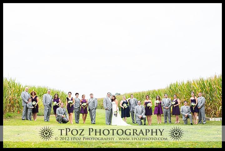 wedding party in cornfields