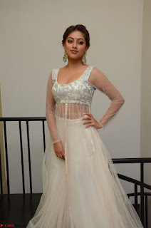 Anu Emmanuel in a Transparent White Choli Cream Ghagra Stunning Pics 029.JPG