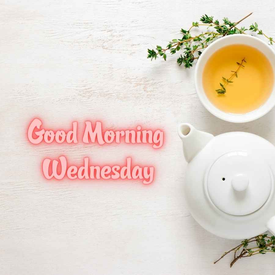 good morning happy wednesday pictures