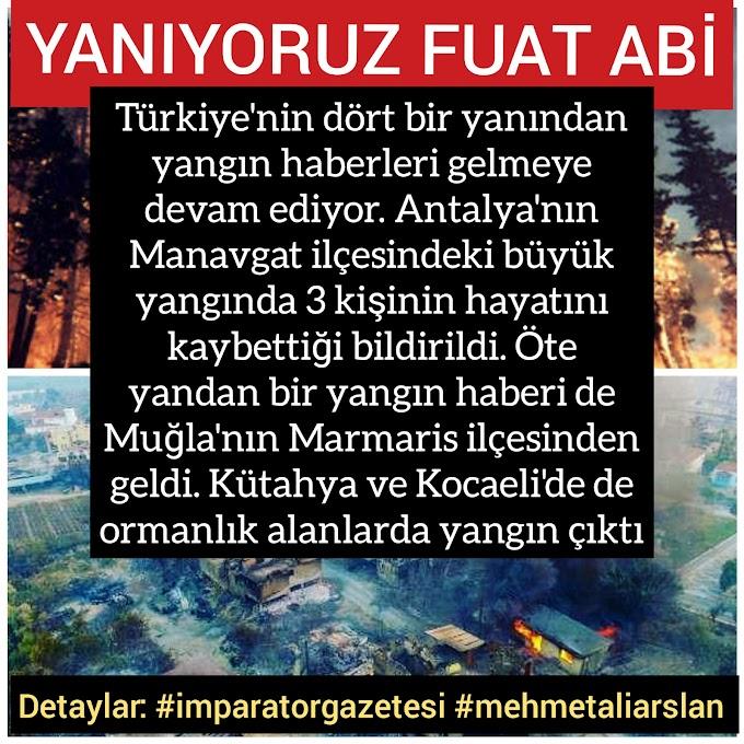 -Manavgat yangını