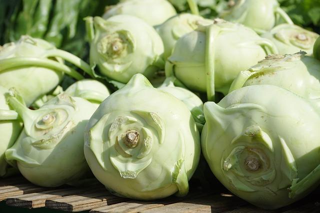 Légumes Autorisés Pour Chien - Chou-rave
