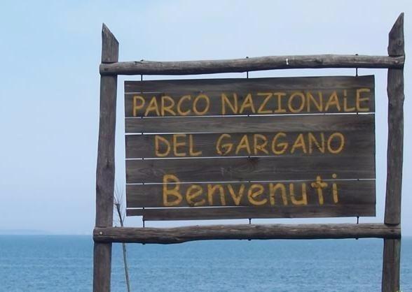 Presidenza Parchi: si sblocca l'empasse al Gargano e Alta Murgia. Ci sono le nomine.