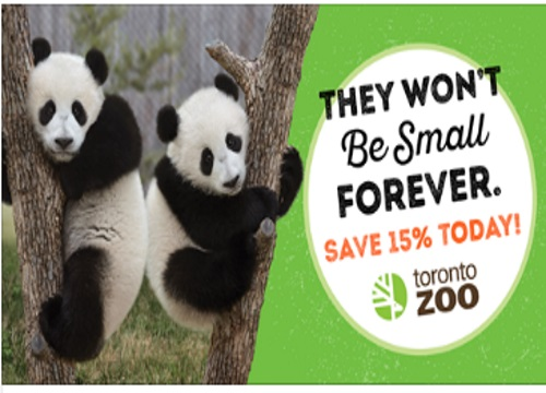 Toronto Zoo 15% Off Admission Summer Savings Offer