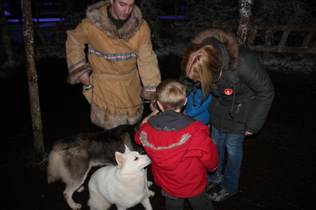 Husky dog at Lapland UK