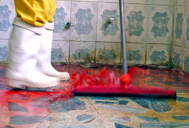 limpieza especial casas fallecimiento Sevilla