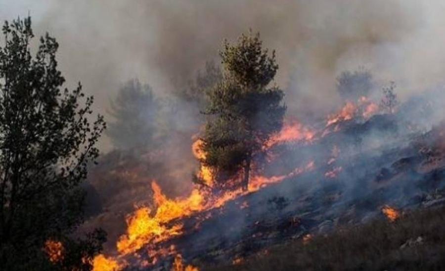 حرائق ضخمة تندلع في مستوطنات الضفة الغربية