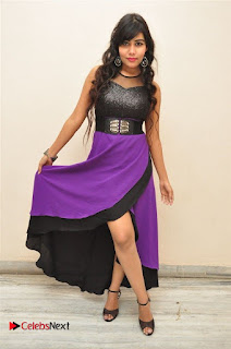 Telugu Actress Rachana Smith Stills at Money is Honey Audio Release  0055.jpg