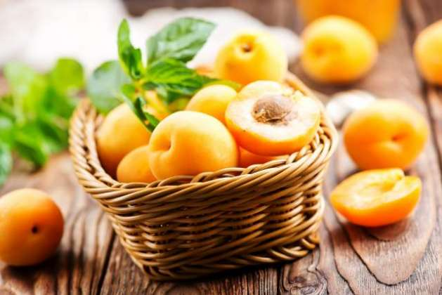 Apricot - Desirable summer Fruit