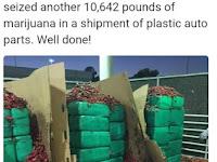 Ganja Senilai $2,3 Juta di Temukan Dalam Pengiriman di Sebuah Pelabuhan
