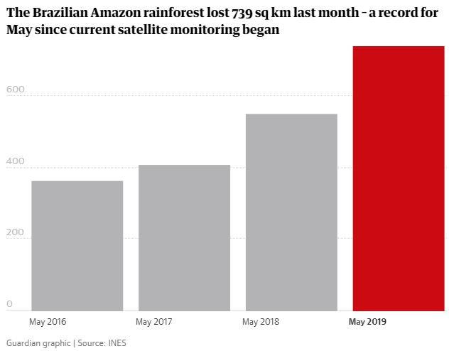 The Brazilian Amazon Rainforest Is Suffering Record High Deforestation