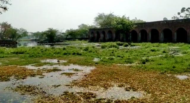 govt.school-narhavli-prithla-constituency-in-haryana