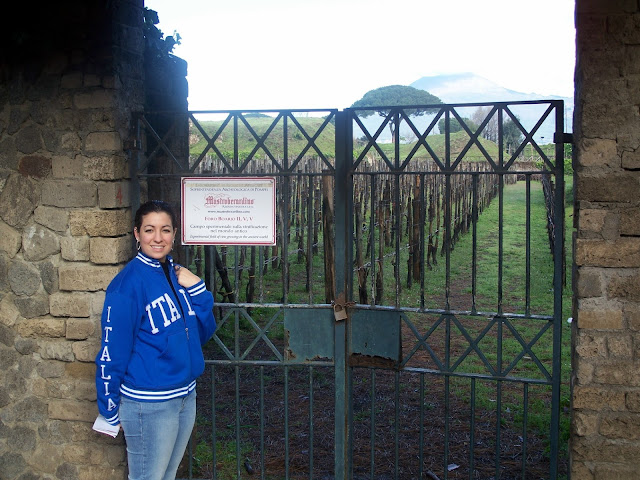 Mastroberardino Villa dei Misteri vineyards