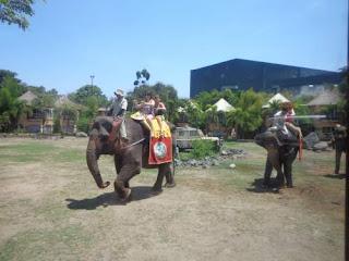 Tafsir Arti Mimpi Tentang Gajah Terlengkap dan Penting Perlu