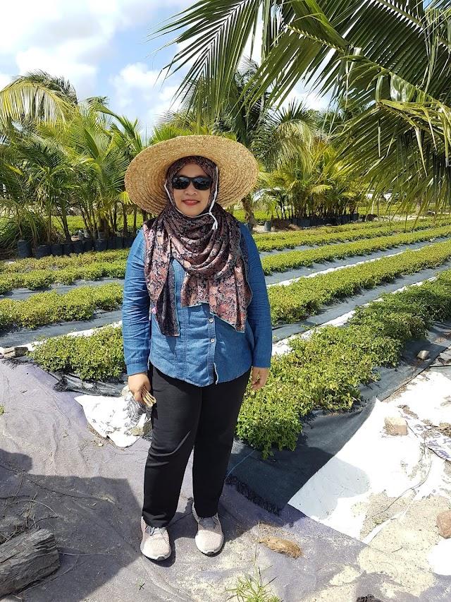 BIOALPHA kumpulan pertanian terbesar di Malaysia yang menanam tanaman herba.