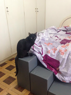 escadas para gatos na cama