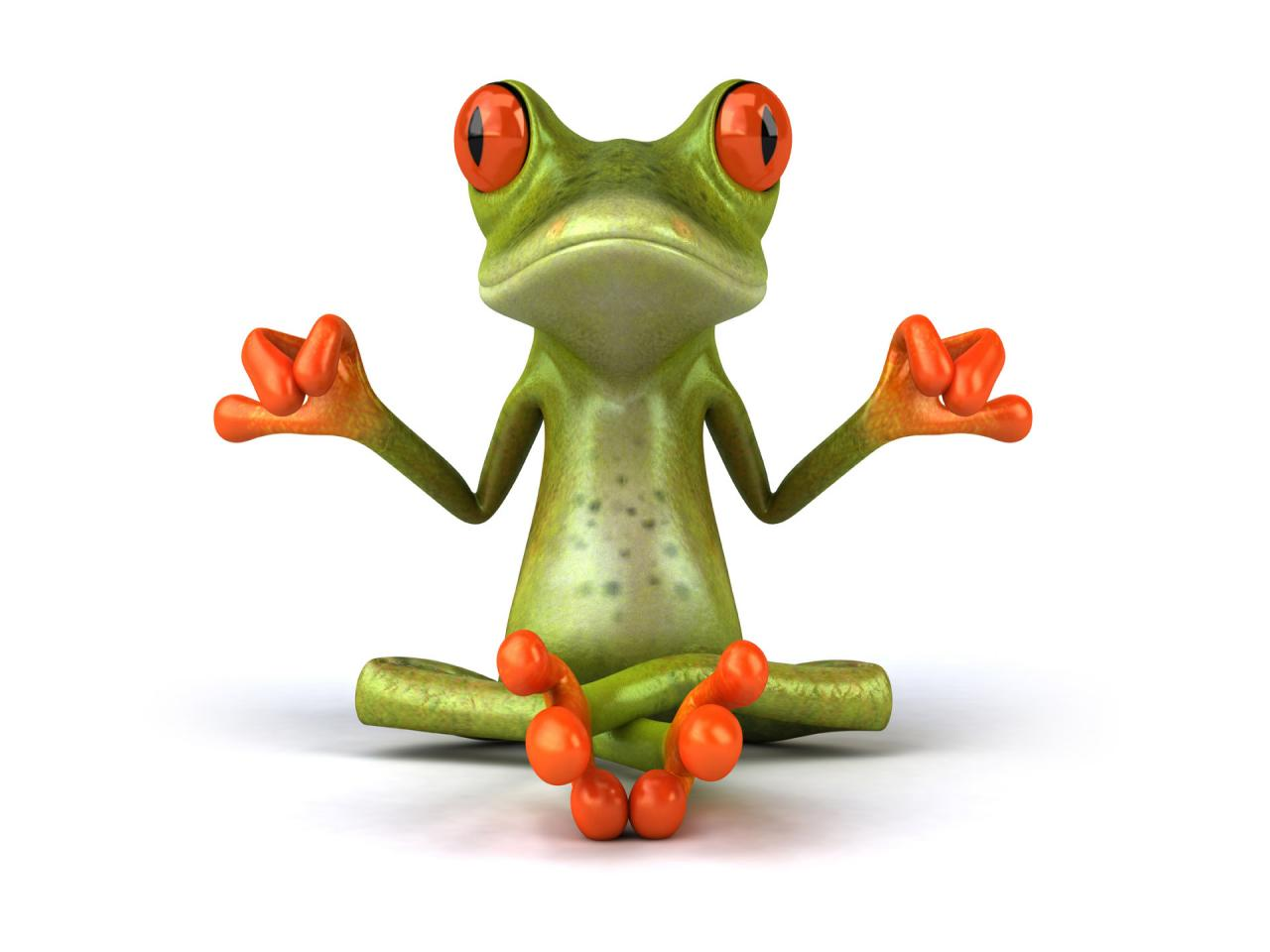 Funny Frog Latest Pictures   Funny And Cute Animals