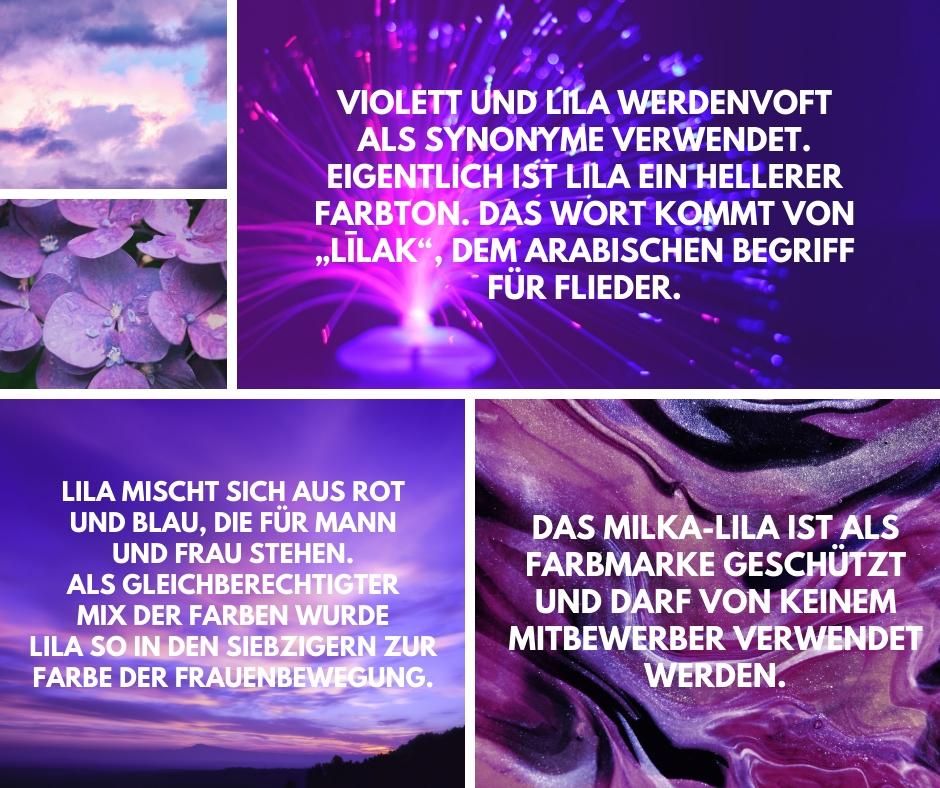 Infografik-Fakten-Violett