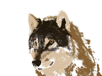 Wolves Wolf Animal Animals Prints Print