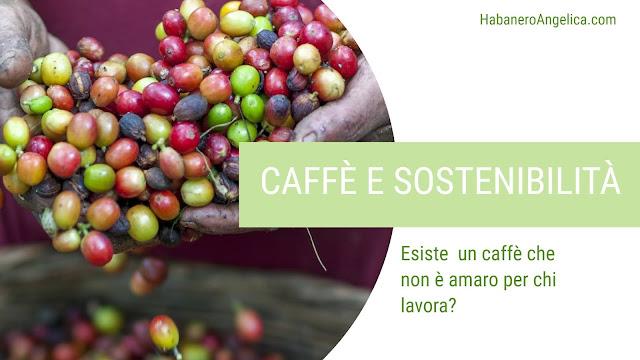 Coltivazione caffè sostenibile