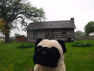 a plush pug appears in front of a small wooden cabin