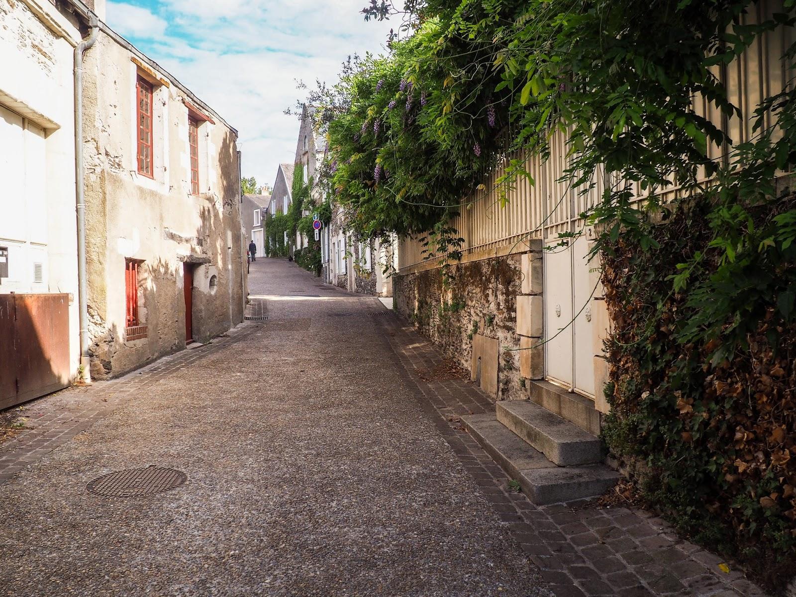 Loire à vélo Bouchemaine