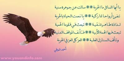 قصائد عن الحرية