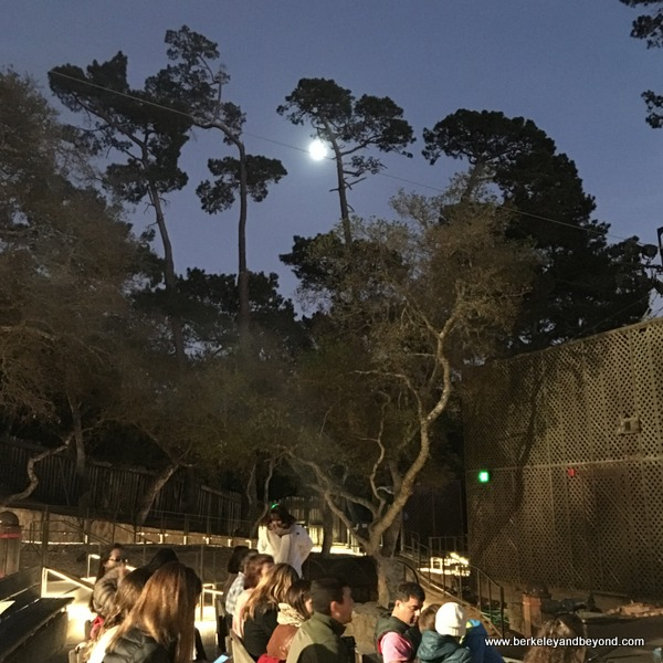 pre-performance at Outdoor Forest Theater in Carmel, California